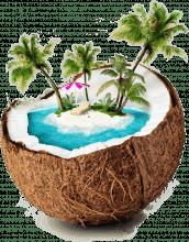 Koodo Coconut