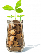 Koodo Money Jar